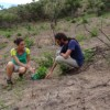 REGUA - the solution to land erosion!