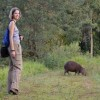 The Capybaras of the REGUA wetlands by Katja Seehawer