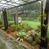 Orchid and Bromeliad Garden