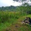 Research on Coleoptera at REGUA