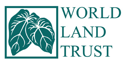 logo-wlt_green