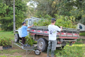 Ruy and Nicholas loading saplings