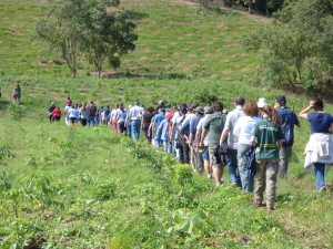 Rio Scouts walking to planting area
