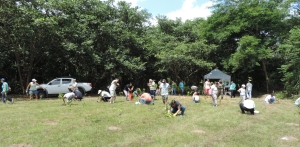 Tree Planting in Cachoeiras de Macacu